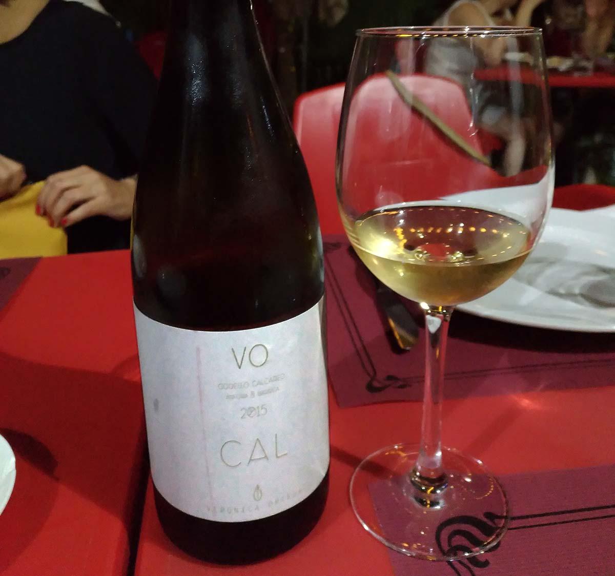 Cal Veronica Ortega 2015