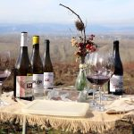 Cata Valle Recunco en vinas