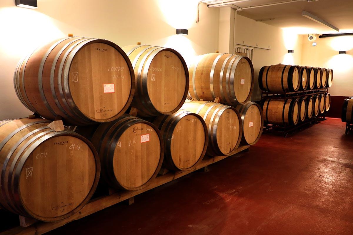 Sala de barricas de Estevez Bodegas y Vinedos