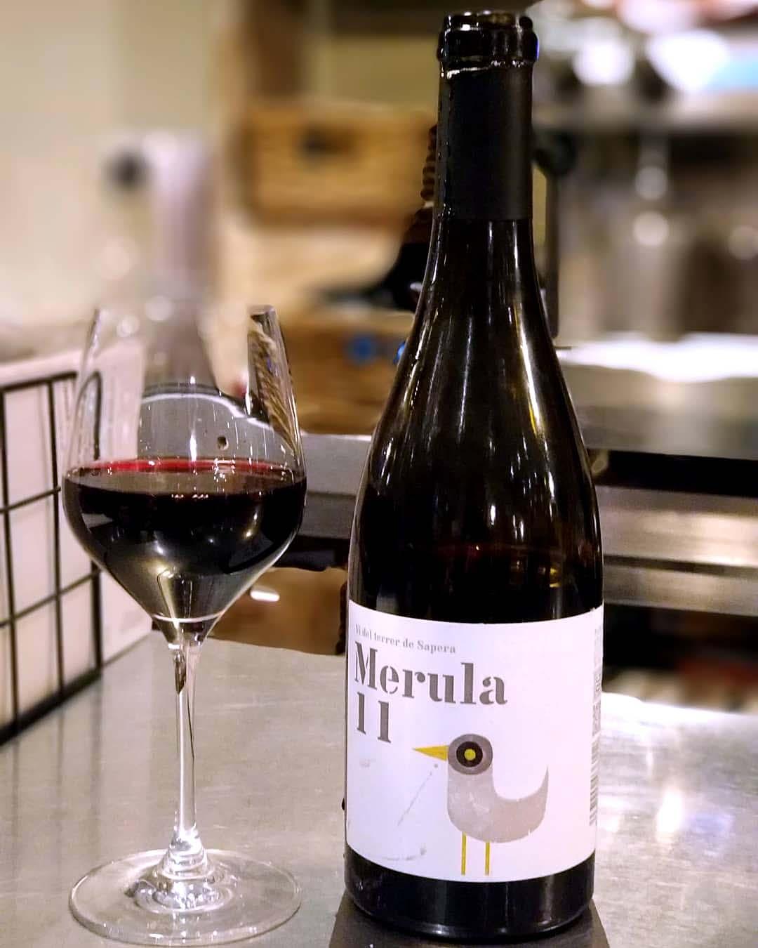 Merula 11