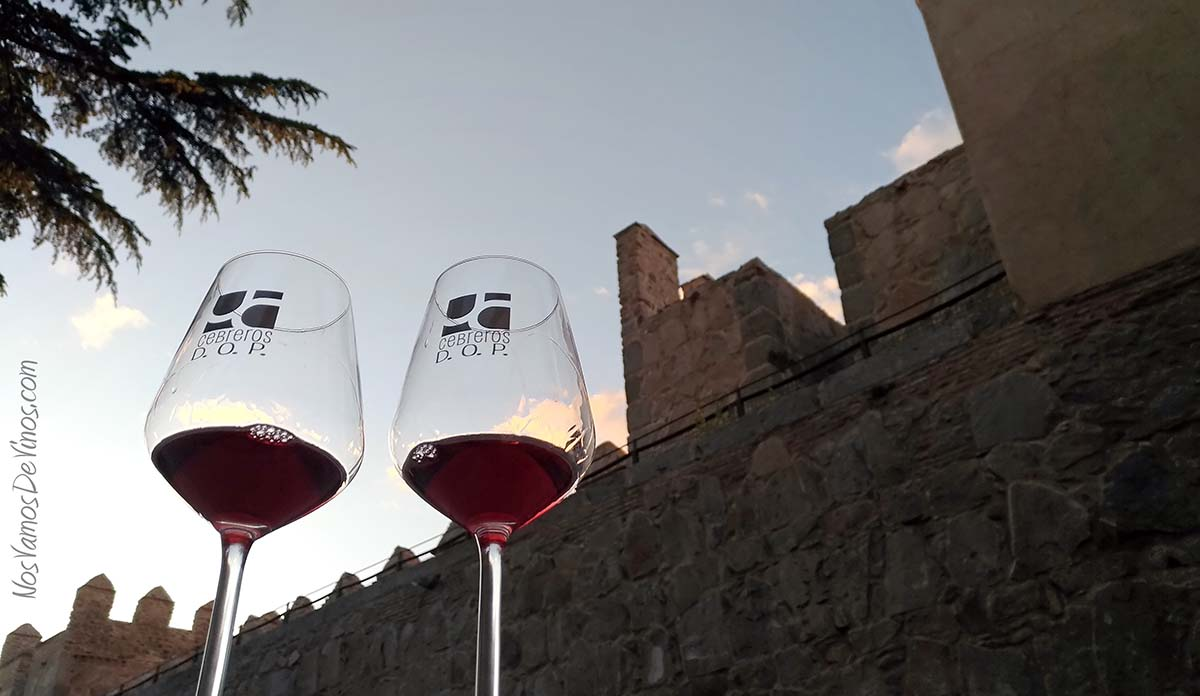 Vinytavila-vino-dop-cebreros-avila-murallas