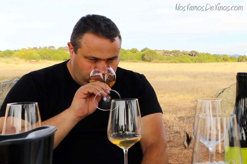 Juan Luis Beltrán, de Vinos y Viñedos Hoyanko.