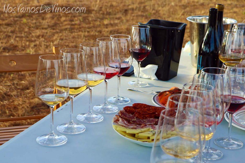Cata y merienda de vinos Hoyanko en Hoyo de Pinares (Ávila).