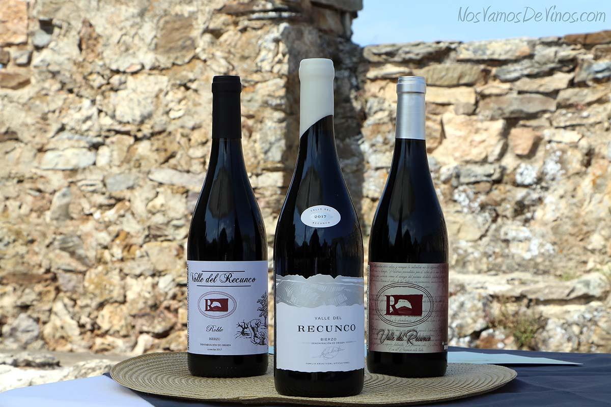 Familia de vinos Valle del Recunco