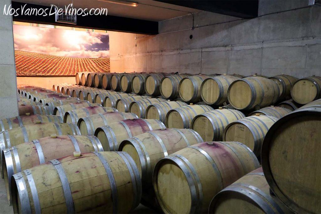 Bodegas y viñedos Luna Beberide, sala de barricas