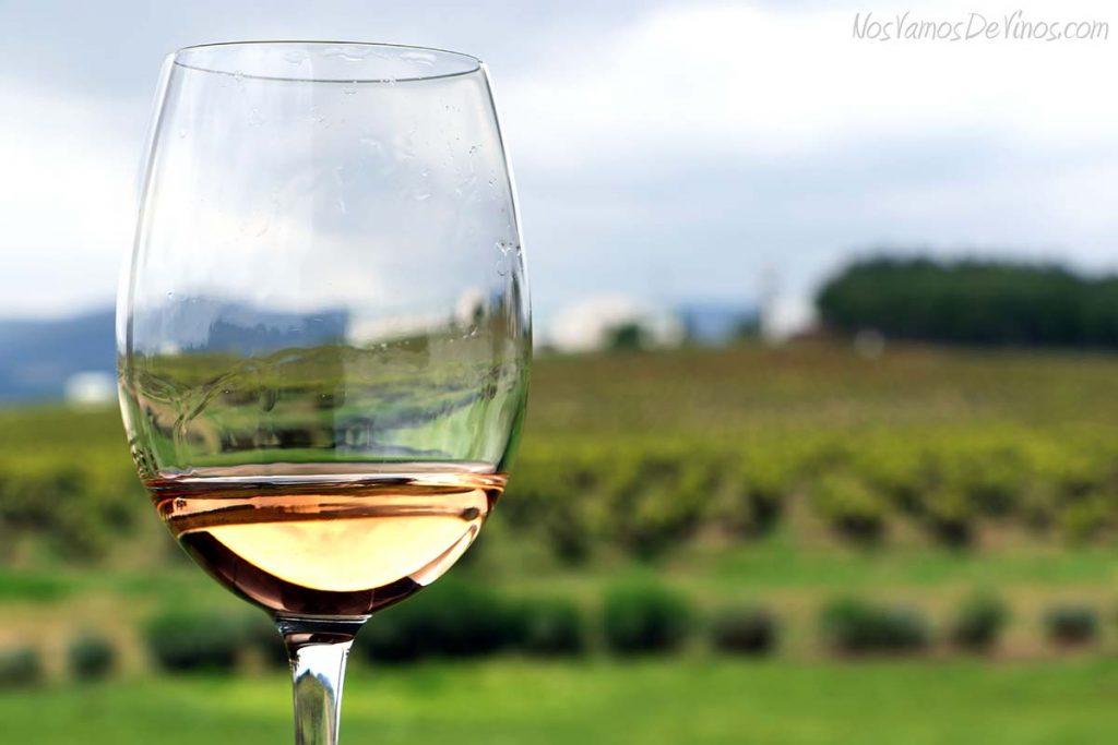 Conversa Rosé 2016 Rioja Copa