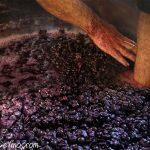 El Hato y el Garabato. José Manuel Beneitez rompe el sombrero de una fermentación