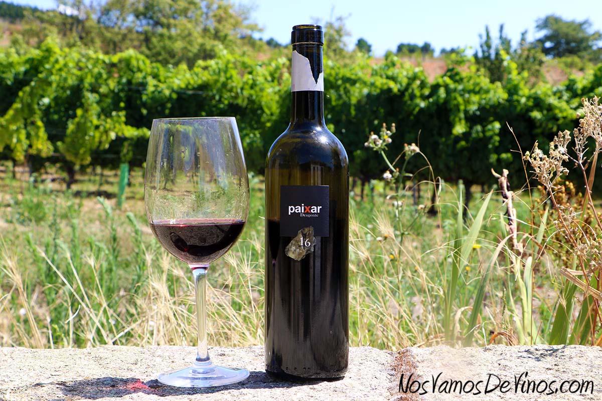 Paixar 2016 Un vino de Bodegas Luna Beberide