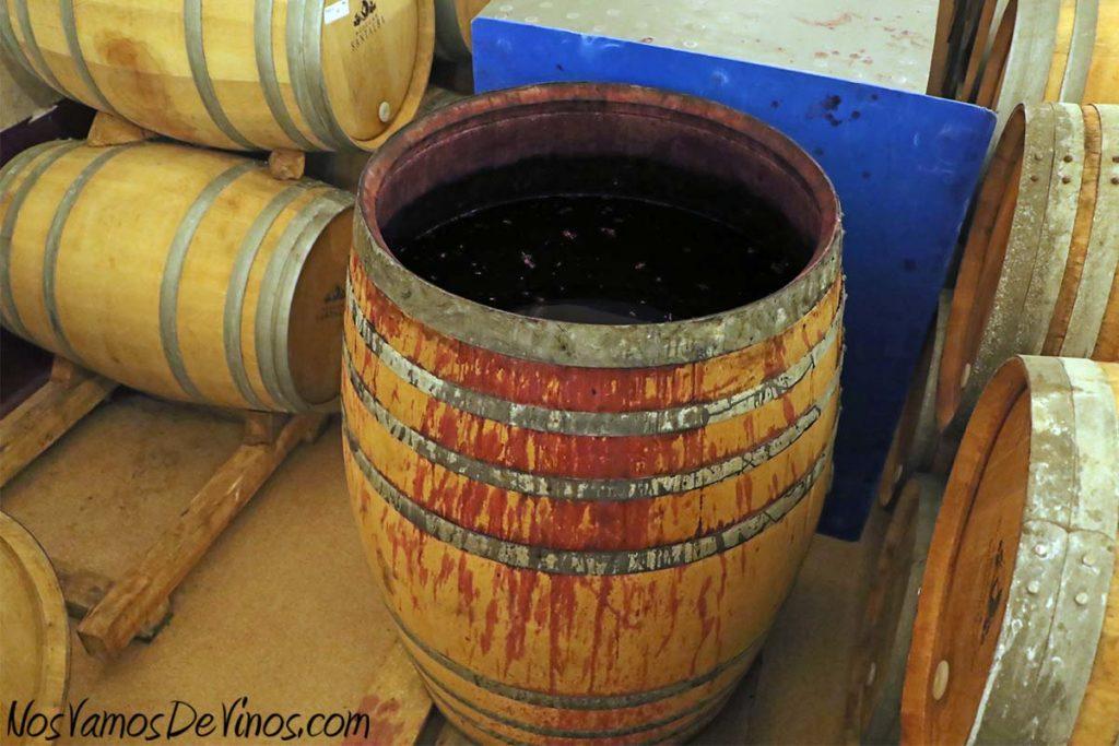Bodegas Santalba. Bocoy de Ripasso en plena fermentación