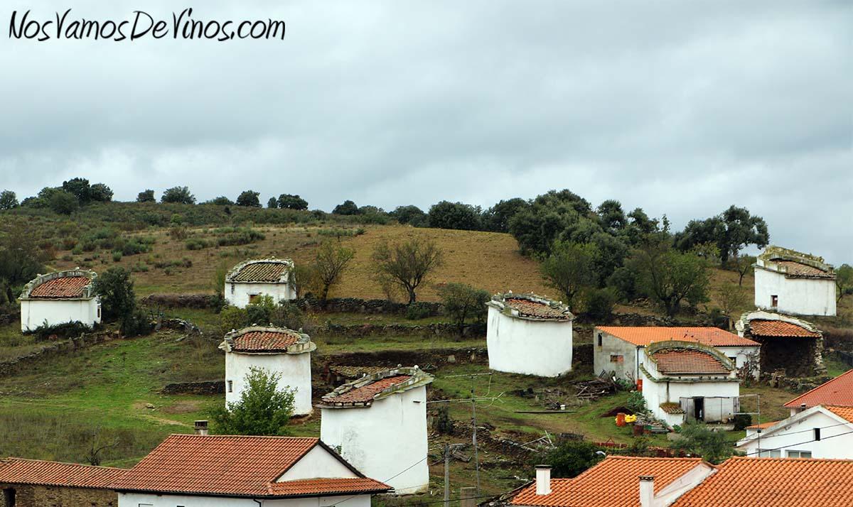 Menina d'Uva. El proyecto vitivinícola de Aline Domingues. Palomares en Uva (Portugal).
