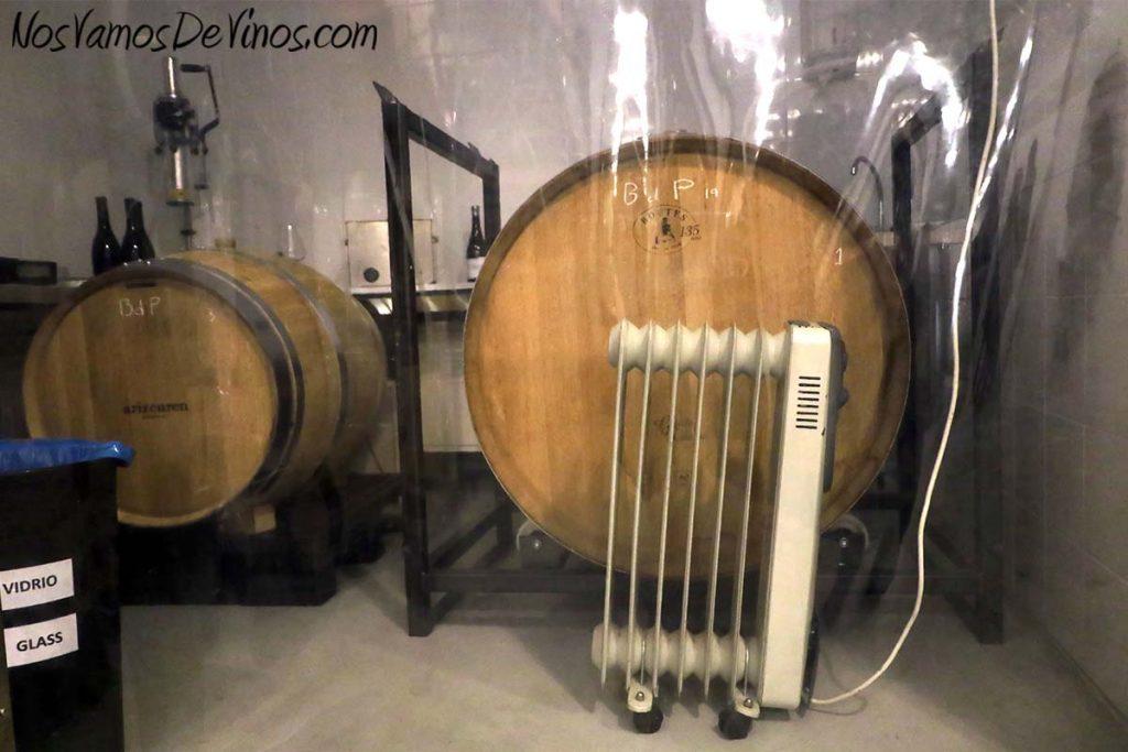 Arizcuren. Bodega urbana en Logroño. Barricas y bocoy haciendo la fermentación maloláctica.