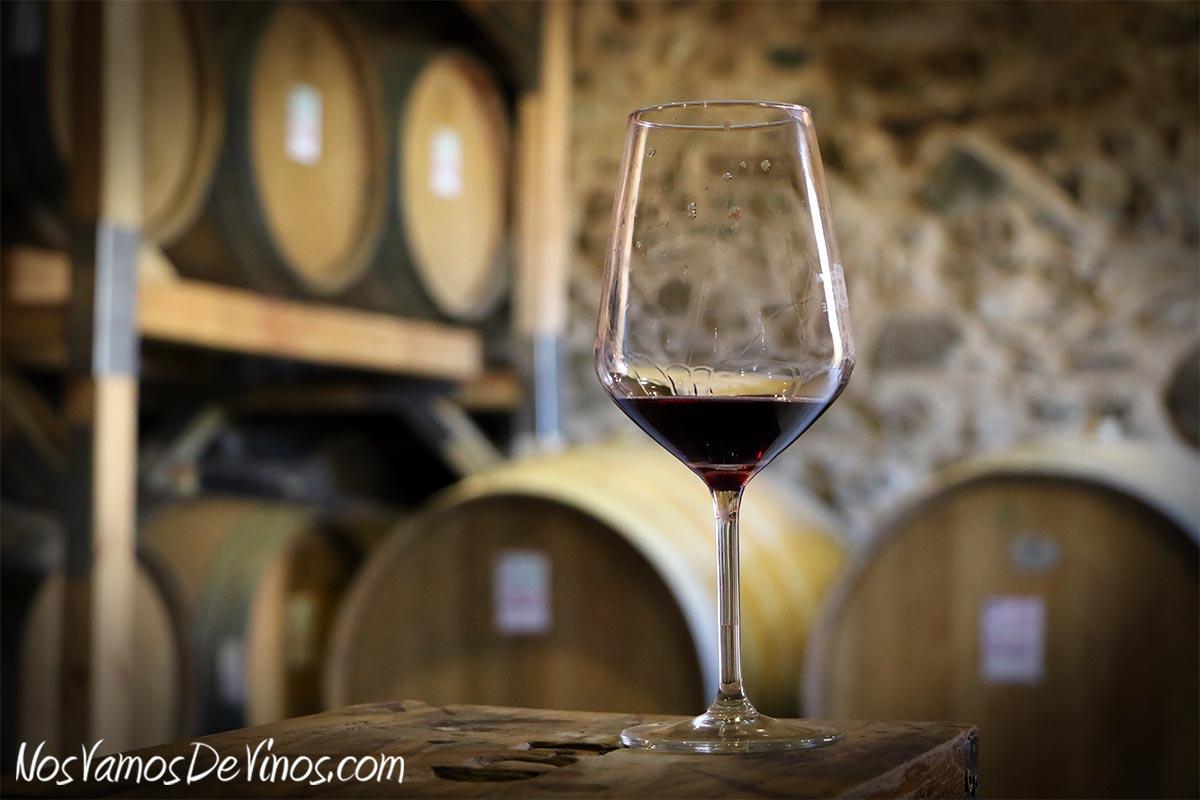 Cata de nuevas añadas en Vinos LOF