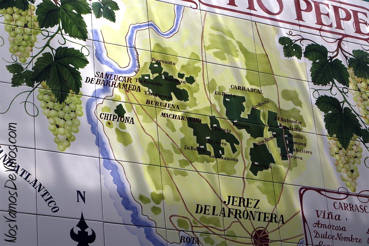 Ubicado a la entrada de la bodega conocida como La Cuadrada, un mapa en azulejo nos permite ubicar los principales pagos del Marco de Jerez.