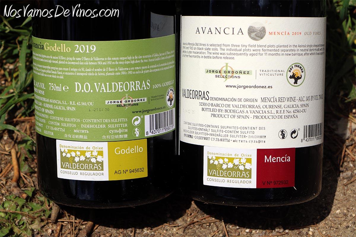 Avancia Godello Old Vines 2019 & Mencía Old Vines 2019 Etiquetas Traseras
