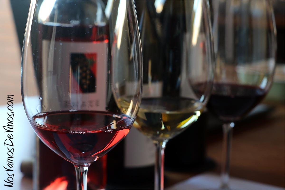 Enate Rosado Cabernet Sauvignon 2020, Chardonnay Fermentado en Barrica 2019 & Merlot-Merlot 2016 Copas