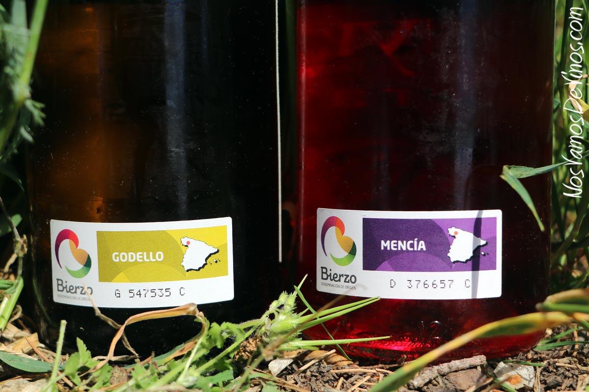 Merayo Godello 2019 y Merayo Rosado Mencía 2019 Etiqueta D.O.