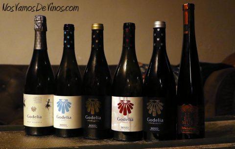 Los vinos de Godelia en la cata
