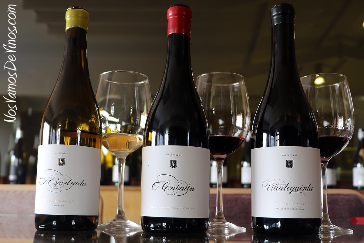 Cata de vinos de O Cabalín.