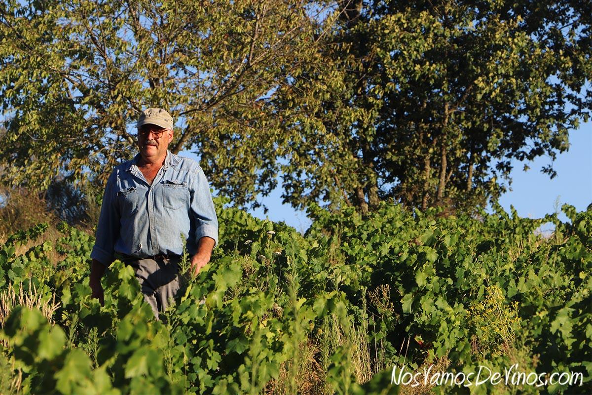 Visita al viñedo de Bodega Feo y cata de nuevas añadas. Aurelio Feo en la parcela de Las Aragonas (Norte).