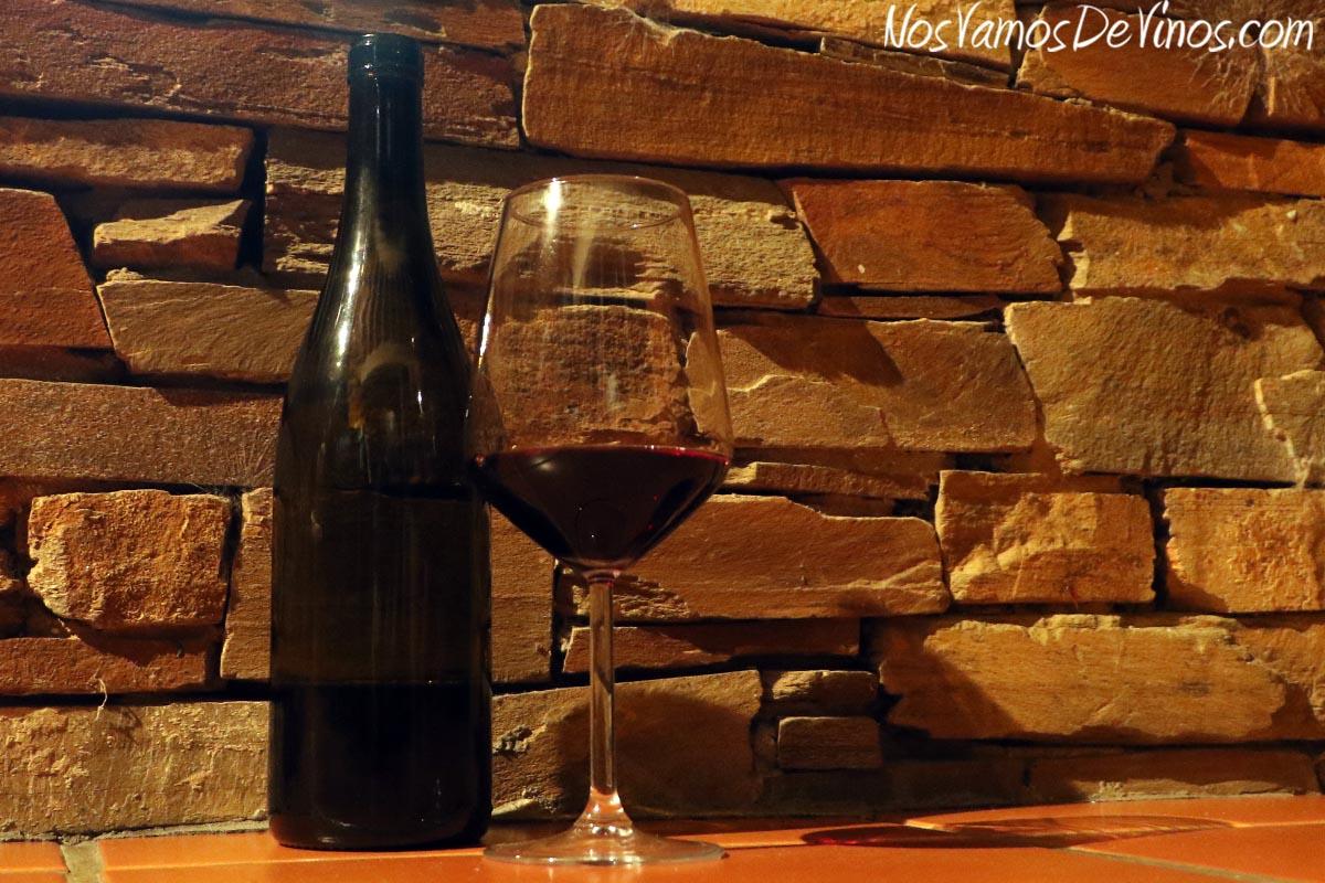 Visita al viñedo de Bodega Feo y cata de nuevas añadas. Cata de Buencomiezo 2017.